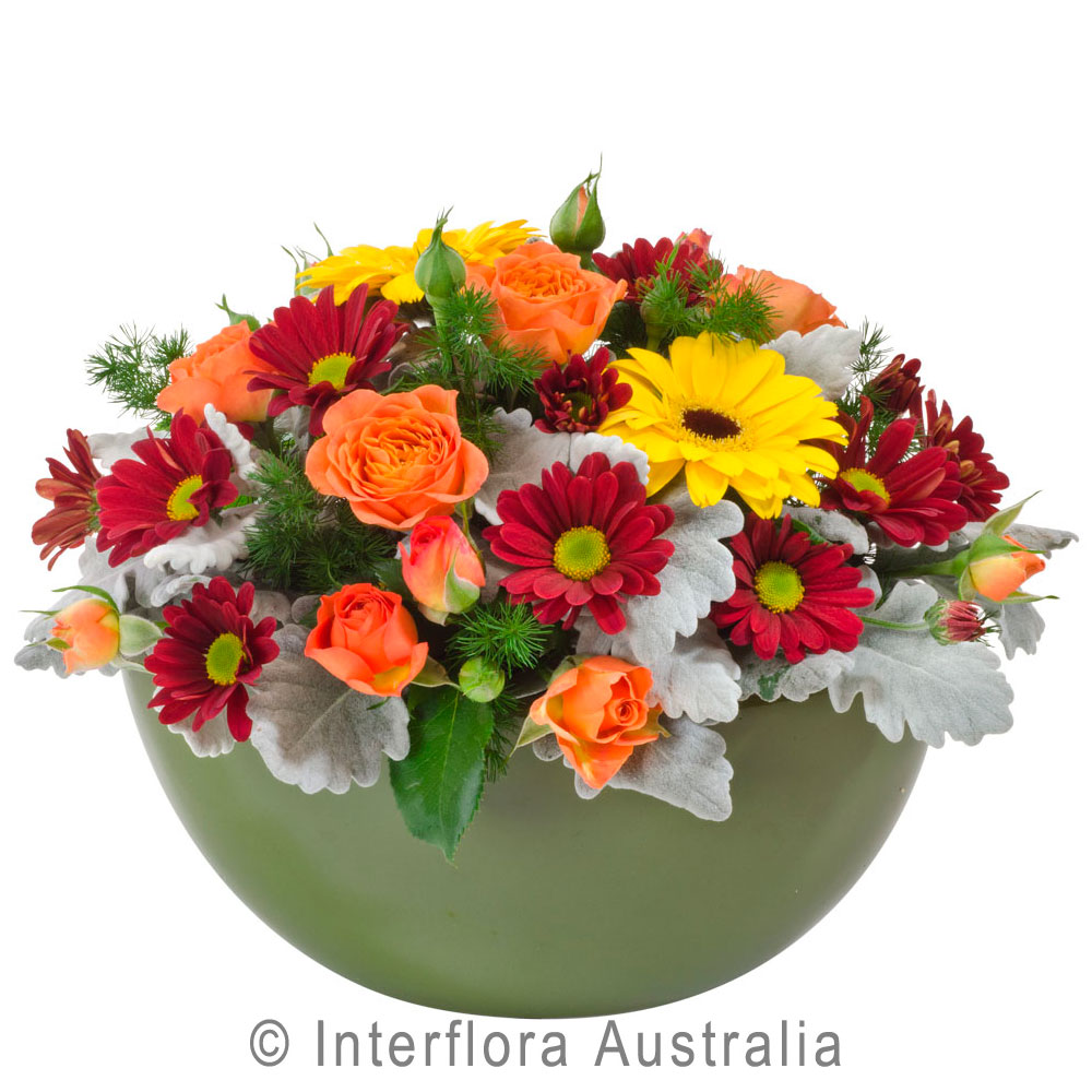 Get well soonhampers archives myrtleford beechworth bright bright and colourful arrangement in ceramic container dhlflorist Images
