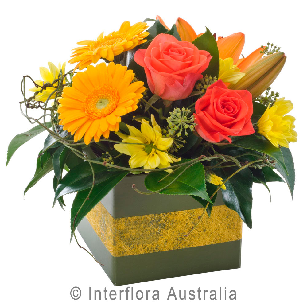 Get well soonhampers archives myrtleford beechworth bright small box arrangement assorted flowers dhlflorist Images