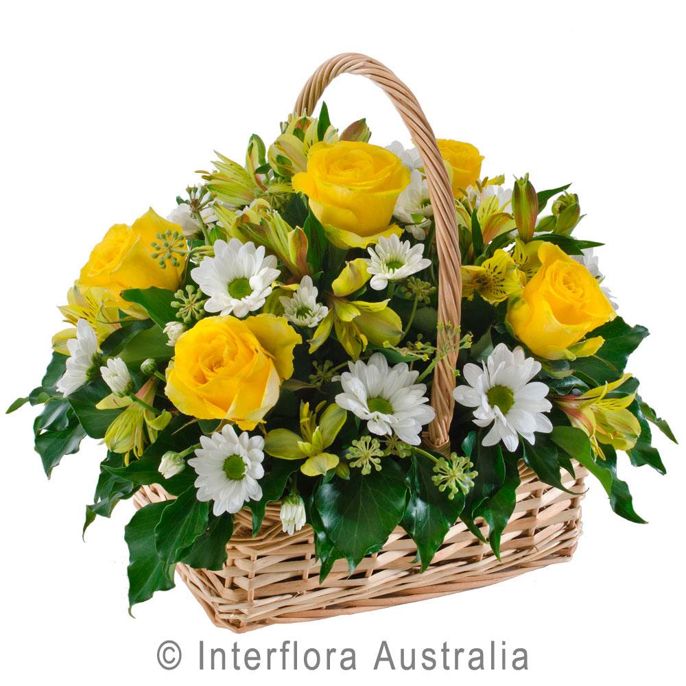 Yellow white basket arrangement myrtleford beechworth bright yellow white basket arrangement mightylinksfo